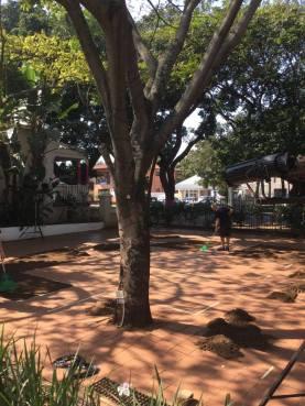 cafe area at KZNSA, Durban